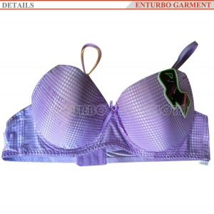 Fashionable Cheap Ladies Bra